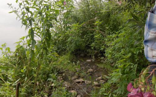 Patak torkolata Shopurka folyónál